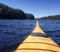 kayaking, spring, wilderness man